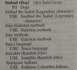 Sinbad (dog) + more